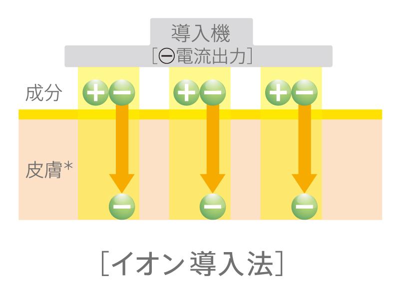 イオン導入.jpg